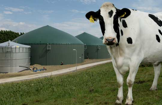 biogas-agriculture-bmark-energy